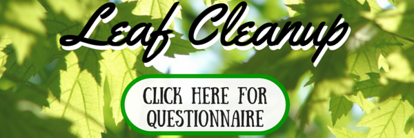 Leaf Cleanup Questionnaire