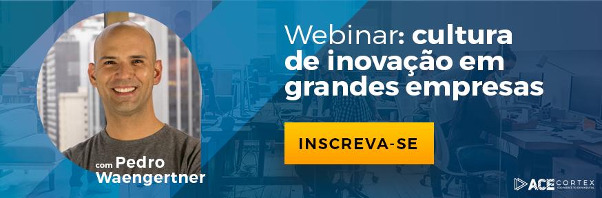 Webinar: cultura de inovação em grandes empresas