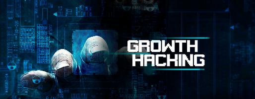 Baixe agora o guia de growth hacking