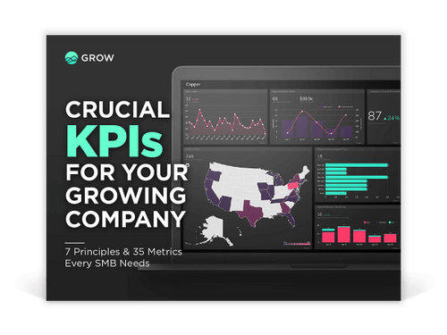 crucial kpis for growing your company