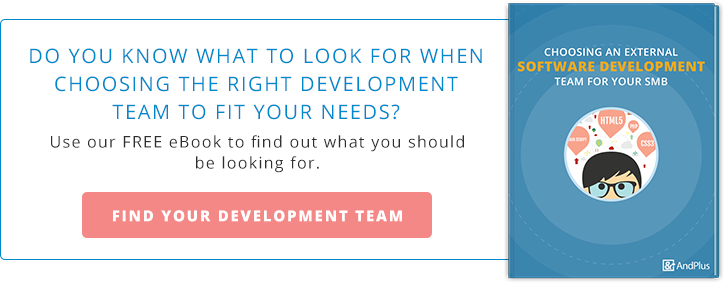 choosing a software development team