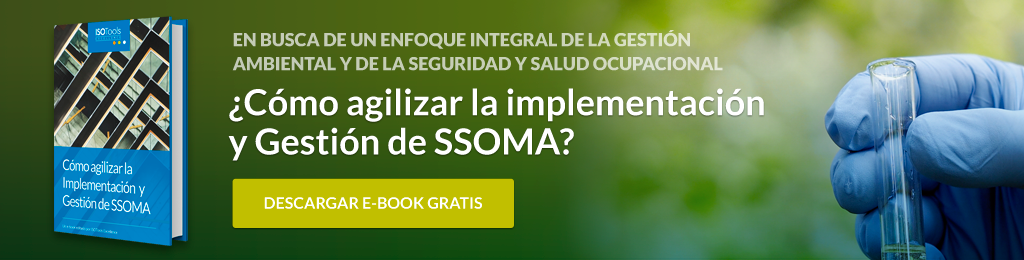 Descarga gratis ebook SSOMA
