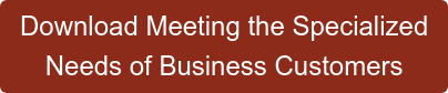 Download Meeting the Specialized  Needs of Business Customers