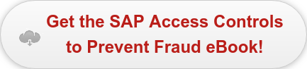 Get the SAP Access Controls to Prevent Fraud eBook!