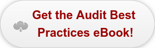 Get the Audit Best  Practices eBook!