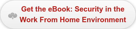 Get the eBook: Security in the  Work From Home Environment