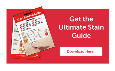 Get the Ultimate Stain Guide CTA