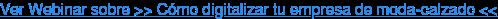 Ver Webinar sobre >> Cómo digitalizar tu empresa de moda-calzado <<