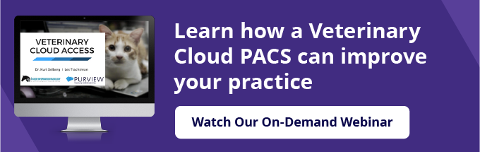 webinar-vet-teleradiology-cloud-pacs-blog