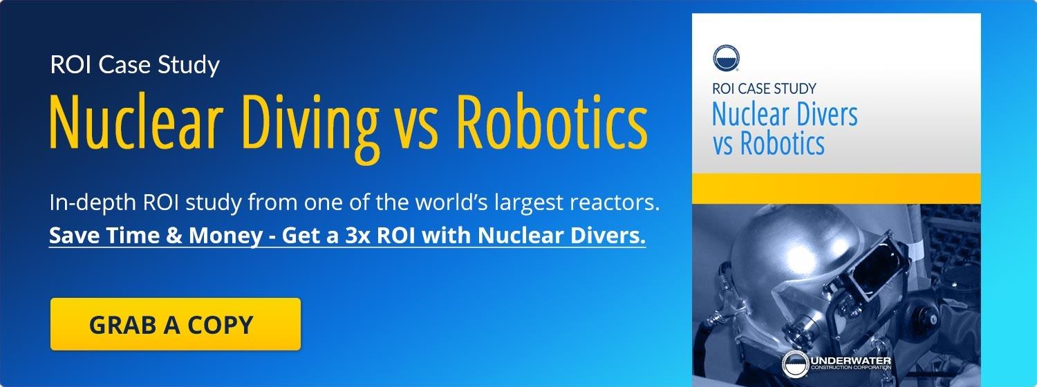 Save Time & Money - Get a 3x ROI with experienced nuclear divers. See an actual (side-by-side) ROI study of world's biggest reactors.