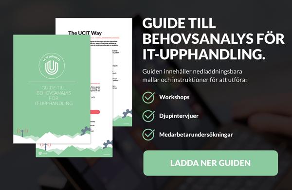 Guide till behovsanalys för IT-upphandling