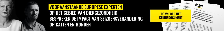 REACT Expert Opinion Banner Desktop BE-NL