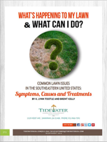 Free E-Book What's Happening To My Lawn & What Can I Do?