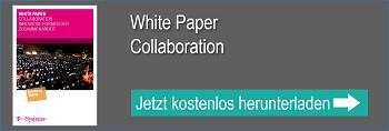 WP Collaboration