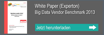 WP Experton Big Data Vendor Benchmark 2013
