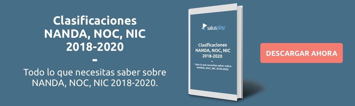 NANDA NIC NOC