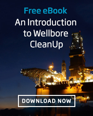 Introduction to wellbore CleanUp CTA
