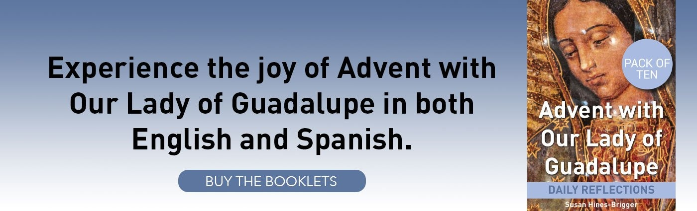 Blog footer CTA Advent Booklet Our Lady of Guadalupe