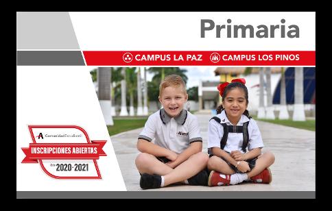 Primaria Alianz Campus La Paz y Campus Los Pinos