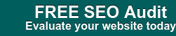 FREE SEO Audit Evaluate your website today
