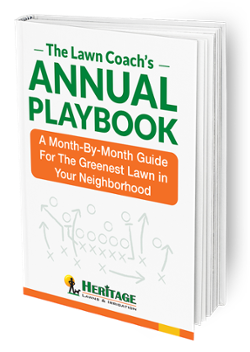 The Lawn Coach's Playbook- Lawn Care Kansas City