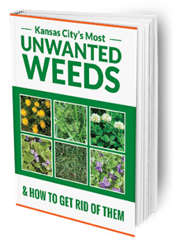 Kansas City's Unwanted Weeds Free Guide