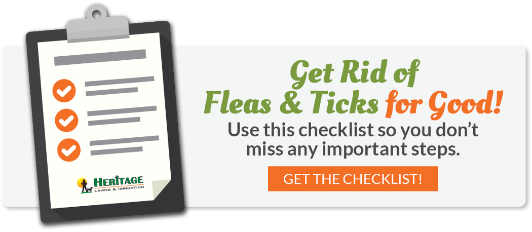 Get Rid of Fleas & Ticks for Good! Use this checklist so you don't miss any important steps.