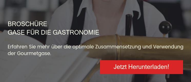 Broschüre Gase für die Gastronomie