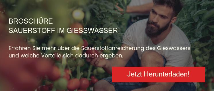 Broschüre Sauerstoff im Giesswasser