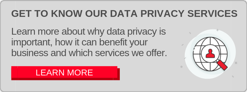 Data Privacy Services