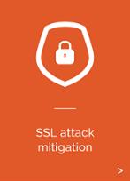 SSL Attack Mitigation