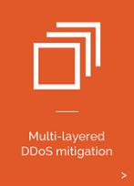 Multi-Layered DDoS Mitigation