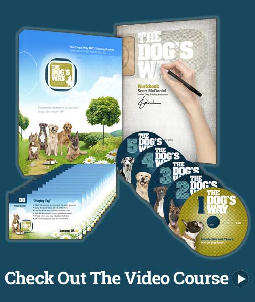 The Dogs Way Video Course