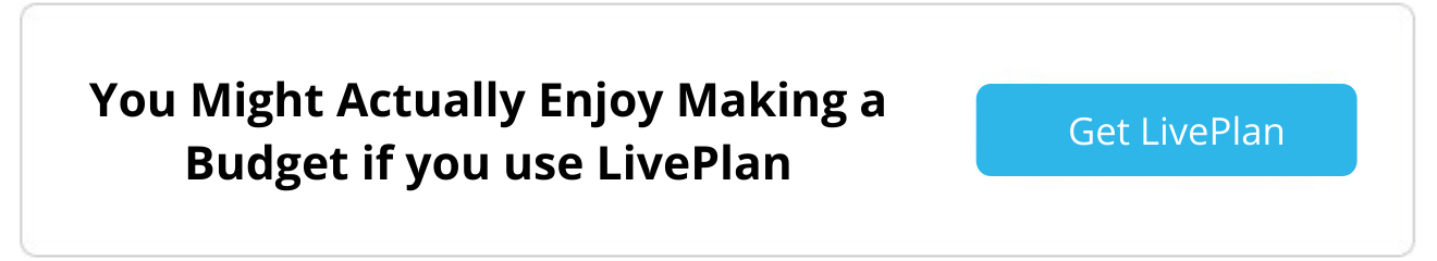 Budget using LivePlan
