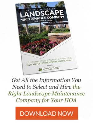 Learn how to hire a landscape company for your HOA