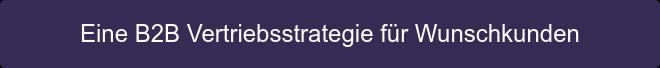 Eine B2B Vertriebsstrategie für Wunschkunden