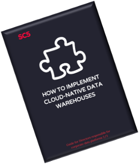 Cloud Native Warehouse