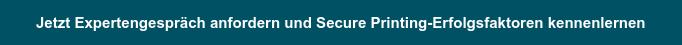 Jetzt Expertengespräch anfordern und Cyber Security-Erfolgsfaktoren kennenlernen