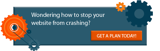 Wondering how to stop your website form crashing?  GET A PLANT TODAY!