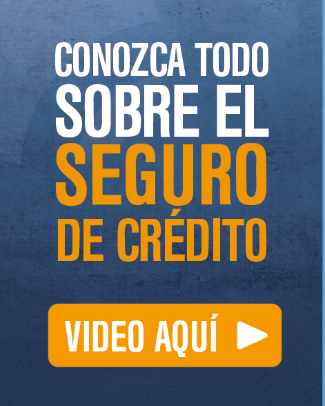 Video sobre el Seguro de Crédito