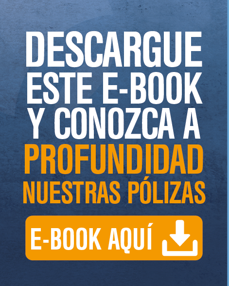 Ebook Seguro de Crédito