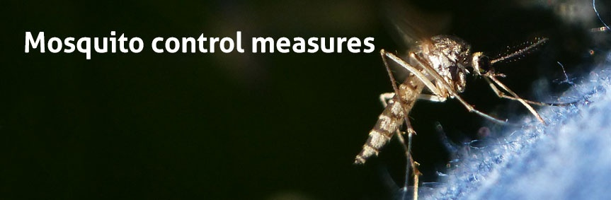 Learn how to control mosquitoes