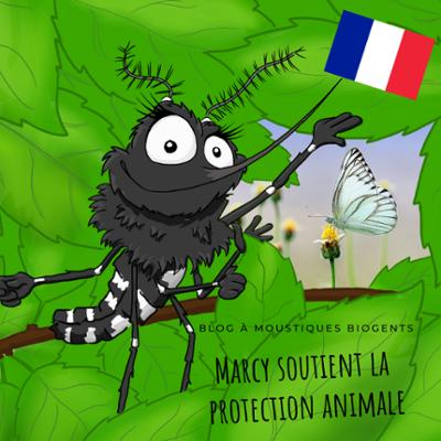 Marcy le moustique tigre soutient la protection animale
