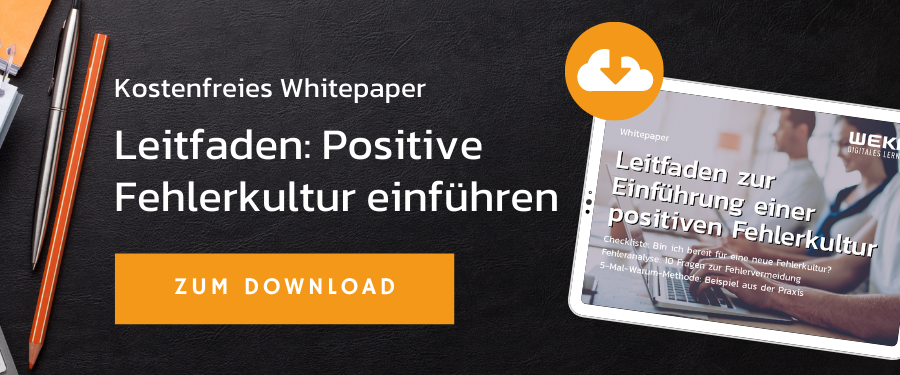 Leitfaden Positive Fehlerkultur einführen