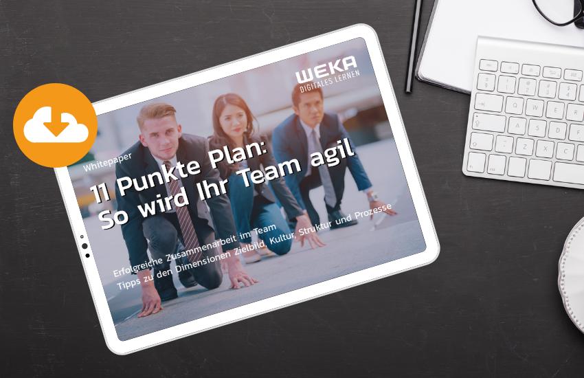 Whitepaper 11 Punke Plan: So wird Ihr Team agil