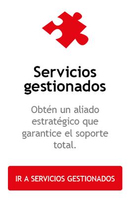 Servicios gestionados