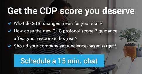 CDP Coaching Session
