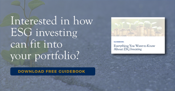 Interested in how ESG investing can fit into your portfolio? Download Free Guidebook.