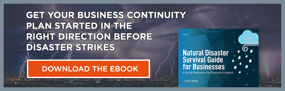 Natural Disaster Survival Guide for Businesses eBook download