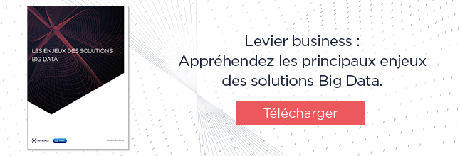 EBook : les enjeux des solutions Big Data